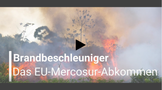 Video EU Mercosur Abkommen